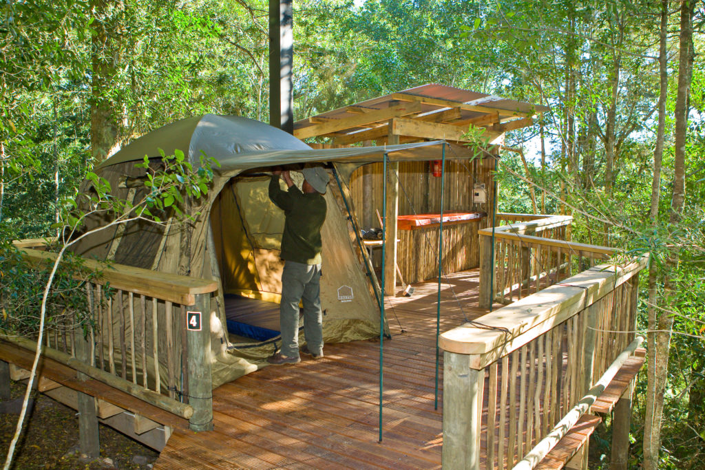 Forest Treetop Canopy Camping Decks 1