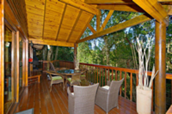 tree top forest chalet deck sm